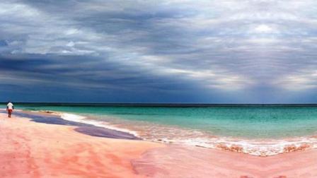 世界唯一的粉红色沙滩太性感! 红色颗粒是什么神秘物质?