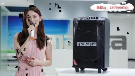 户外音响快手拉杆音箱录段子专用-万利达L12寸双无线话筒