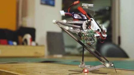 盘点2017全球最牛的机器人!