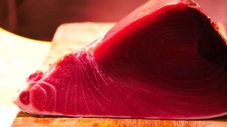 探秘日本金枪鱼市场, 品尝顶级金枪鱼刺身和寿司, 叹为观止