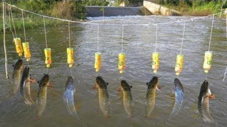 牛! 农村姑娘用5个塑料瓶制成的无人自动钓鱼系统, 鱼儿纷纷咬钩