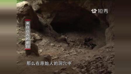 北京山顶洞发现神秘鹿角 抽象图案解锁千古之谜
