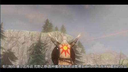 塞尔达传说最新战斗来袭, 黑暗之魂索哥大赞美丽太阳