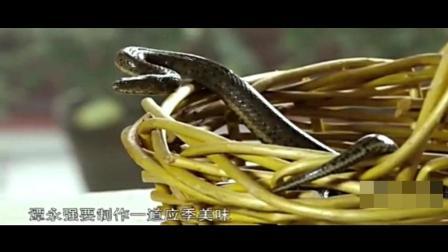 舌尖上的中国: 等待4个月的菊花水蛇羹, 汤色奶白水蛇鲜嫩, 香气馥郁!