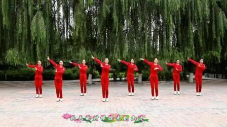 新十六步广场舞 现代舞蹈教学视频大全 广场舞教学分解动作