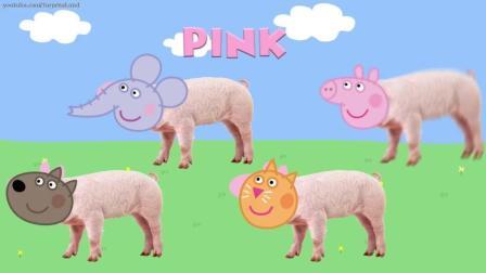 早教启蒙益智英文动画: 猪猫大象的头和身体色彩匹配, 学习颜色