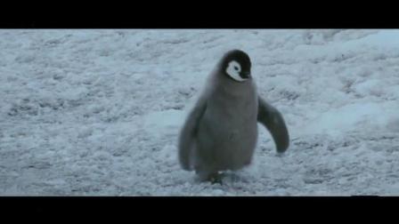 帝企鹅日记2召唤-2006年奥斯卡最佳纪录长片《帝企鹅日记》续集