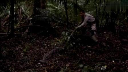 荒野求生倒霉的蟒蛇遇到饿昏了的贝爷, 贝爷的表情开心坏了