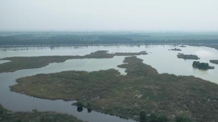 青岛莱西有片湿地, 是山东最大的内陆湿地, 90%的青岛人都没去过