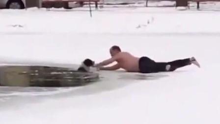 看国外大叔冰雪天把狗丢水池, 本想山前谴责, 谁知下一幕, 让我服了