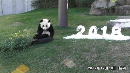 大熊猫把2018的冰块给破坏了