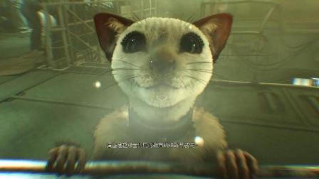 《抗德奇侠2》06丨再生猛男!