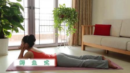 从新手到高手瑜伽第二集