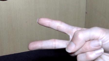 萝卜吐槽元旦篇-模玩年度总结TOP3