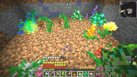 我的世界美丽新世界77: 小园丁, 种花人