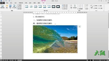 Word2013教程(二十七)图片的编辑修改等相关工作1