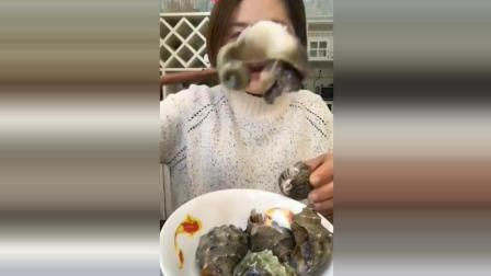 大毛小吃货: 吃货姐姐吃水煮海螺, 一口一个尾巴全揪出来, 就是沙太多了