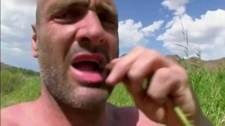 德爷在草原发现神秘水果, 用它冲了杯果汁, 没想到是黑加仑口味