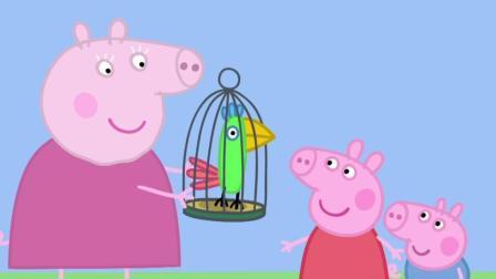 小猪佩奇055 波莉的假期_超清