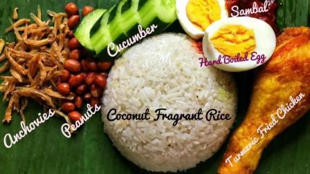 Foodie Licious ASMR吃播: 自制的椰浆香米饭, 饿了来碗吧~