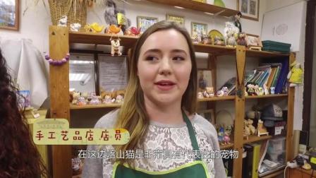 Day3 参观喀山特色手工艺品店 俄罗斯女沙皇最爱喀山猫