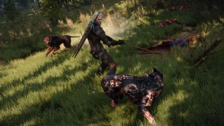 《巫师3:狂猎》全成就全任务最高难度攻略解说 第三期 百果园的野兽(上)