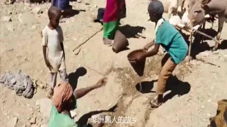 一部揭露史上最残忍酷刑电影, 真实事件改编, 堪比满清十大酷刑!