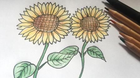 向日葵简笔画, 葵花绘画, 简单易学的儿童画画