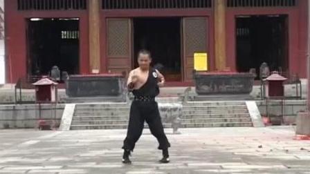中华传统拳术虎鹤双形拳表演, 就是这么威武霸气