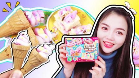 潇潇和玩具 日本食玩创意DIY!制作超美味手工冰淇淋! 制作超美味手工冰淇淋!