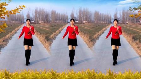 河北青青广场舞《中国好姑娘》32步