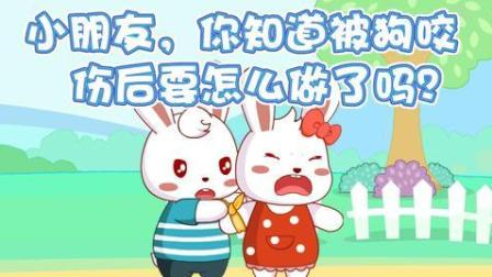 兔小贝安全教育动画第一季 014 被狗咬伤了怎么办