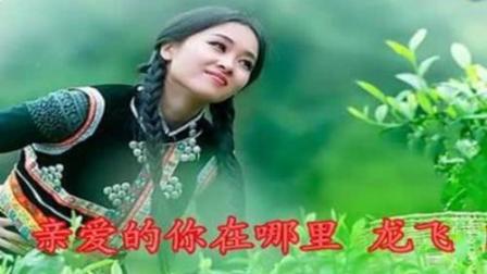 歌曲《亲爱的你在哪里》(龙飞-门丽)