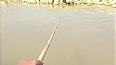 8秒鱼进洞, 遗传了老祖宗得钓鱼方式