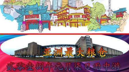贰零壹捌年元月柒日雨中游上海亚洲最大粮仓