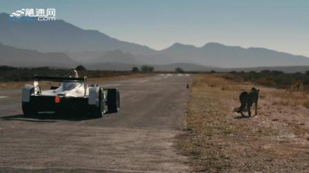 短程加速赛- 电动方程式赛车 vs 猎豹