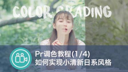 【视频大拍档】Pr后期调色教程1/4: 日系小清新风格