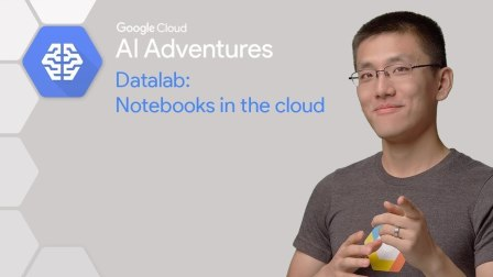 Datalab: Notebook in the Cloud