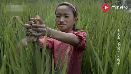 舌尖上的中国: 打工的妈妈回家, 和孩子一起稻田里抓鱼, 做腌鱼