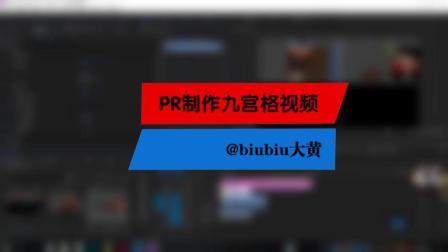 【技巧分享】#3 PR制作九宫格视频