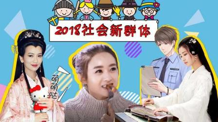 【淮秀帮】2018社会新群体: 你是中年少女还是佛系青年?