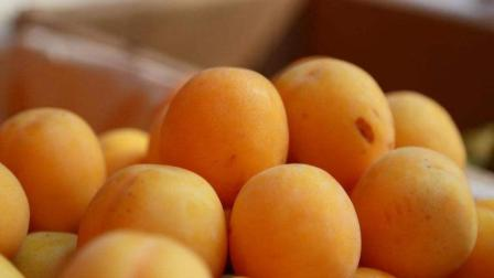 这种水果是身体的解毒王, 一天吃一颗, 体内毒素全排干净