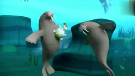 《海底小纵队》小纵队遇到海象幼崽, 真的好小啊!