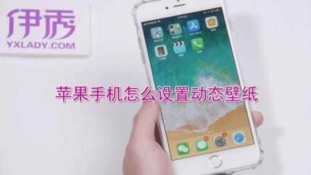 苹果手机怎么设置动态壁纸, 教你轻松搞定