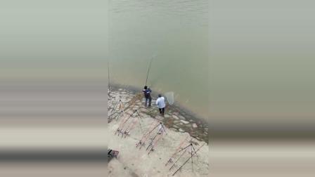 2018开年最悲催的钓鱼视频, 心疼这位钓友
