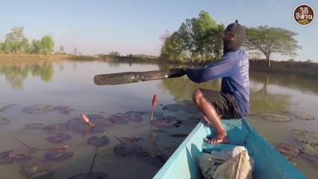 农村60岁大叔, 河边下粘网捕鱼, 这收获, 真让人眼馋!