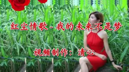 红尘情歌一首翻唱歌曲《红尘情歌》好听至极!