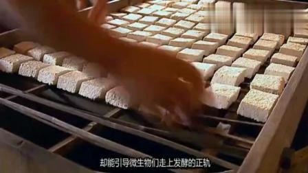 舌尖上的中国: 豆腐都长毛了, 要价还这么贵!