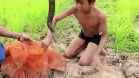 贫困山区的孩子是这样的抓蛇的