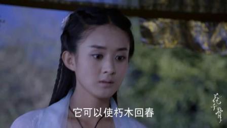 炎水玉可召唤九方神器, 赵丽颖却表示很无奈, 东方: 你快去找吧!